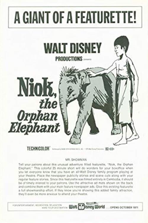 Niok, The Orphan Elephant
